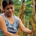 Falta de equidad de género impide la plena conservación del ambiente
