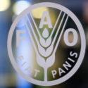 Concurso de la FAO sobre la mujer rural en Latinoamérica