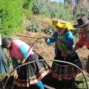 Mujeres rurales con derechos, una meta con vaivenes en América Latina